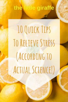 Stress causes 11.7 million lost workdays and 37% of work related illnesses a year. Let's take better care of ourselves! Here's my 10 quick tips.
