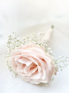 Sweet avalanche, baby's breath boutonniere ... Wedding ideas for brides & bridesmaids, grooms & groomsmen, parents & planners ... https://itunes.apple.com/us/app/the-gold-wedding-planner/id498112599?ls=1=8 … plus how to organise an entire wedding, without overspending ♥ The Gold Wedding Planner iPhone App ♥