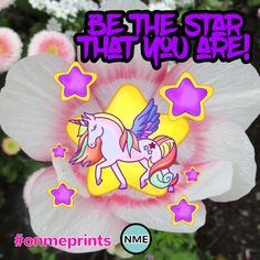 Inside of you is divinity like a Pegasus let your wings open and fly in those stars! #onmeprints #divine #pegasus #unicorn #golden #stars #petal #quotes #dailyquote #kawaii #cute #happyquote #miracle #celebratelife #livelife #bealive #motivation #inspire #dream #happy #love Text You, Custom Buttons, Pegasus, Yin Yang, Cute Designs, Daily Quotes, Live Life, Unicorn, Motivational Quotes