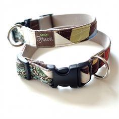 'Bo' Collars & Leashes