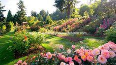 Yeni Bahçe Dekorasyonu Modelleri