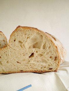 Il pane di Matera (madre+birra)