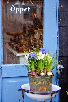 Liljor Och Tulpaner (Lilies and Tulips blog)