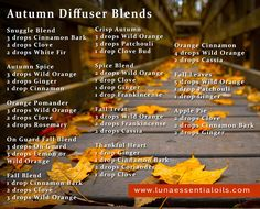 luna essentials: Diffuser blends for my favorite season