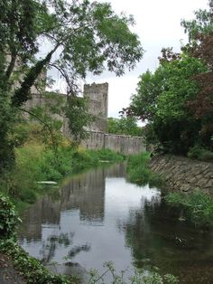 Cahir Castle from a distance, Cahir, Tipperary, Ireland