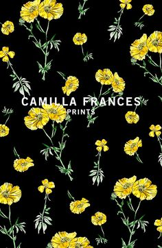 { floral print - delicate yellow flowers } Camilla Frances prints