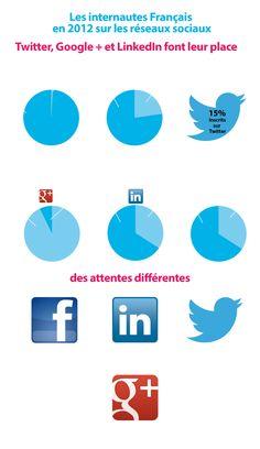Les Français et les réseaux sociaux.