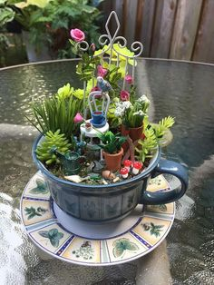 Miniature fairy gardens 310748443043351357 - Favourite Indoor Fairy Garden Ideas Source by marlisgrandi Indoor Fairy Gardens, Mini Fairy Garden, Fairy Garden Houses, Gnome Garden, Miniature Fairy Gardens, Miniature Fairies, Fairies Garden, Water Gardens, Small Gardens