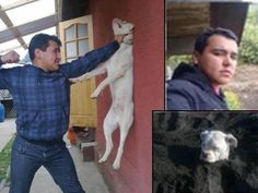 Please get this cruel man's face out on the web!!! He is a piece of trash and needs to pay for his cruel actions!