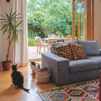 Sertéshúsos ételek a Mindmegette recepttárban Armchair, Furniture, Home Decor, Sofa Chair, Single Sofa, Decoration Home, Room Decor, Home Furnishings, Home Interior Design
