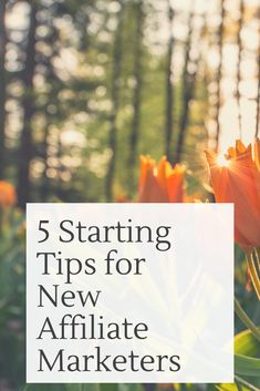 Here's a few tips that can help get you started on the right track, and avoid some of the pitfalls that can be costly if you don't know what to look out for. Affiliate Marketing, Track, Learning, News, Runway, Track And Field, Teaching, Studying