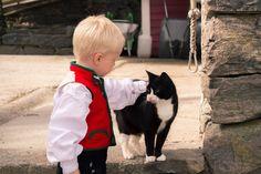 En liten brudesvenn og katten Benny. Bergen, Cats, Animals, Gatos, Animales, Animaux, Kitty, Cat, Cats And Kittens