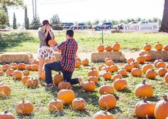Thanksgiving is right around the corner, so if you want to pop the question, check out these creative proposal ideas!