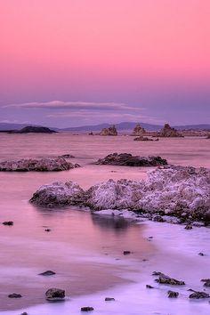 Old Marina Sunset, Mono Lake, California