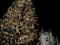 "68 Likes, 5 Comments - Luca (@luca.vasco) on Instagram: ""Ghosts #2 🌖 Fin qui tutto bene... 🌫 #christmastree #christmas #natale #milano #duomo #camkix…"""