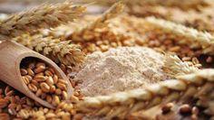 Vollkorn Produkte werden aus gutem Grund bei Paleo vermieden. ➤Hier bekommst du alle Fakten zum Thema Vollkorn - Schluß mit Brot, Pasta, Pizza & Co