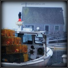 """7-15-2014 """"Owl On Duty"""" ~ A little misty rain won't stop these intrepid lobstermen.  *** POSTCARDS FROM FRIENDSHIP. A pic a day served fresh daily from Friendship Maine. SuperHumanNaturals.com *** #toothsoap #cure #cankersores"""