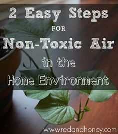 2 Easy Steps for Non-Toxic Air in the Home
