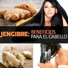 Cómo usar el jengibre para que crezca el cabello y otros beneficios - La Guía de las Vitaminas Diy Beauty, Brown Hair, Healthy Life, Hair Care, Shampoo, Hair Makeup, Health Fitness, Hair Styles, Vitamins