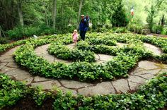 Garden labyrinth idea-I'd use with broken concrete and with a planting of something more appropriate to my area. Would be a good idea to reduce areas to be mowed.