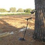 Metal Detector, Video, Fisher, Outdoor Decor, Plants, Italia, Advertising, Detector De Metal, Plant