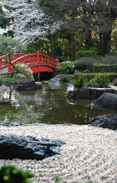 Jardin japonais by beatricekessler on pinterest japanese for Jardin zen japonais