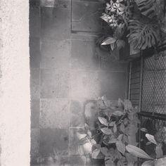 VK Home design #Chequered #Cuddapah Stone #Texture