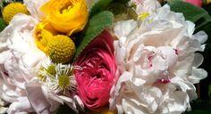rosebredl.com . Rose Bredl . Columbus, Ohio wedding and event flowers