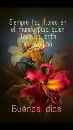 Beautiful Morning Quotes, Inspirational Good Morning Messages, Bible Verses Quotes Inspirational, Good Day Quotes, Good Morning Quotes, Good Morning Inspiration, Daily Inspiration Quotes, Good Morning In Spanish, Happy Birthday Wishes Images