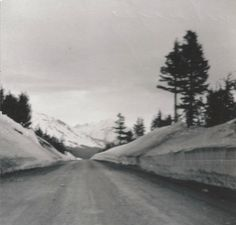 Mountain Pass near Anchorage, Alaska headed to Homer, Territory of Alaska 1952 by Monty Wright driving from Washington, DC to Homer