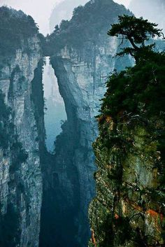 Zhangjiajie Stone Forest - China's Avatar Mountains. Looks mythical.