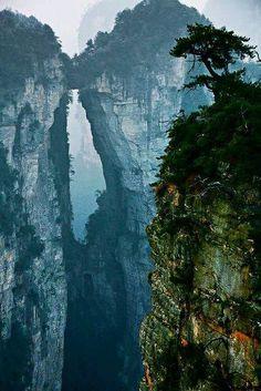 Forêt de Pierre Zhangjiajie en Chine