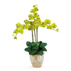 Nearly Natural Triple Phalaenopsis Silk Orchid Flowers in Green
