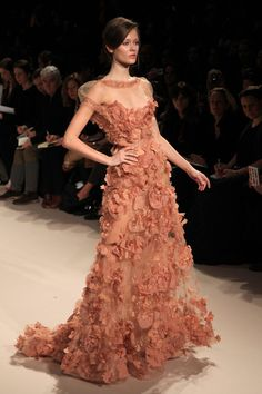 """The Anna sui couture dress that I used for mrs Thomas's """"most beautiful dress essay"""