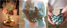 LOVE this first pic for centerpieces: pinecones, baby's breath, and deep orange flowers
