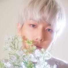 변백현 / Baekhyun / Baekhyun EXO / Baekhyunee puppy / Baekhyun cute / Hot Baekhyun / EXO CBX comeback / EXO Blooming days / Бэкхён °♡