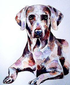 weimaraner 3  Print Watercolour A3 3040cm/1612 by RhysEliasGallery