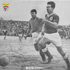 """Rogério """"Pipi"""" fez 94 anos. SL Benfica (@SLBenfica)"""