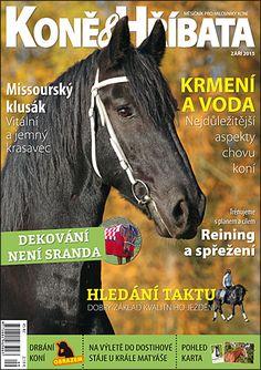 Září 2015 Appaloosa, Equestrian, Magazines, Horses, Movie Posters, Animals, Art, Journals, Art Background