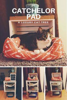 DIY Catchelor Pad or Cat Tree - Imgur
