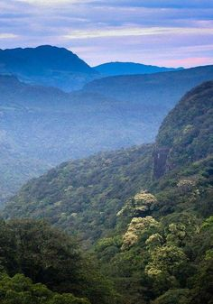 Sri Lanka | Visit the link to read more about travelling Sri Lanka