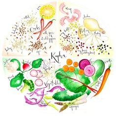 In Ayurvedic Mediicine, a natural medical practice from India, Ayurveda Massage is used extensively for various health purposes. Ayurveda Vata, Pitta Dosha, Holistic Healing, Natural Healing, Ayurveda Lifestyle, Ayurvedic Recipes, Ayurvedic Medicine, Organic Living, Food Illustrations