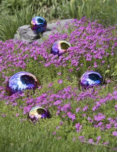 Gazing Balls Blue & Purple in the garden flowers.