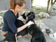 Yelena from Switzerland visited ROLDA