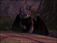 how to train your dragon - Google Search