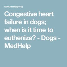 Signs & Symptoms of End-Stage Canine Congestive Heart ...