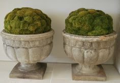Dried moss in large stone planters.