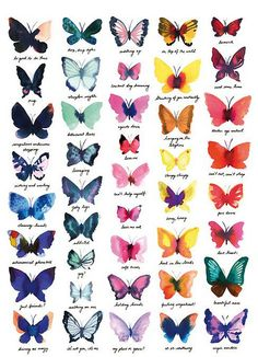 Watercolors of a variety of Butterflies by Miss Capricho... water color butterflies...#thebest #thefunnest