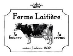 Marvelous Cows & Dairy Kit - TGF Premium! - The Graphics Fairy