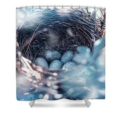 Oksana Ariskina Shower Curtain featuring the photograph Birdnest With Blue Eggs by Oksana Ariskina #OksanaAriskina #OksanaAriskinaFineArtPhotography #ArtForHome #FineArtPrints #InteriorDesign #PrintsForSale  #Egg #Spring #Bird #Birdnest #nest #Blue #Songbird #easter